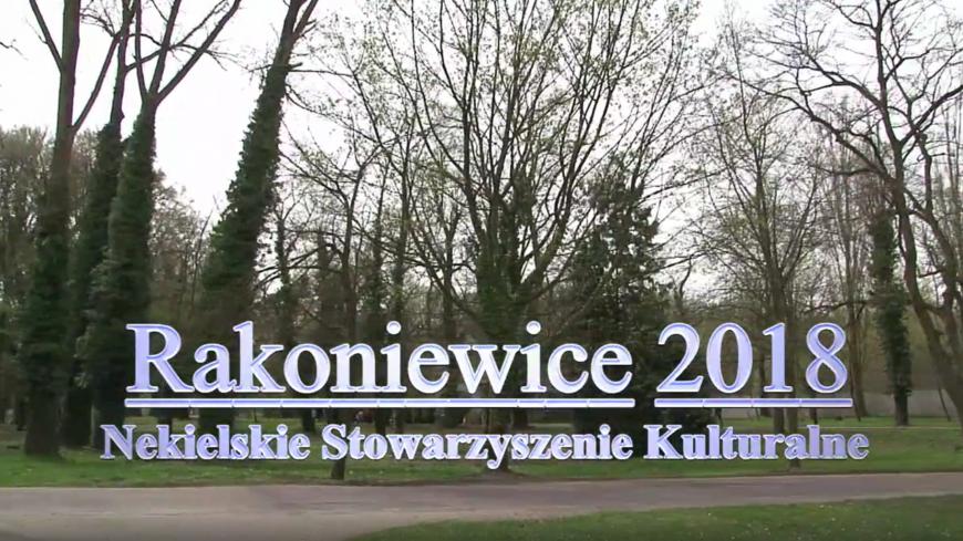 Doświadczenia Gminy Rakoniewice w ratowaniu zabytkowego pałacu z 1840 r.